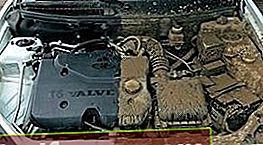 Mootori puhastusvahend