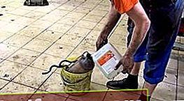 Katalüsaatori puhastusvahend