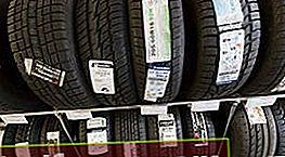 Hvilke dæk er bedre at vælge