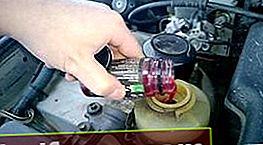 Millist õli roolivõimendi täitmiseks