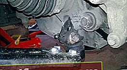 Udskiftningskugle Chevrolet Aveo T300